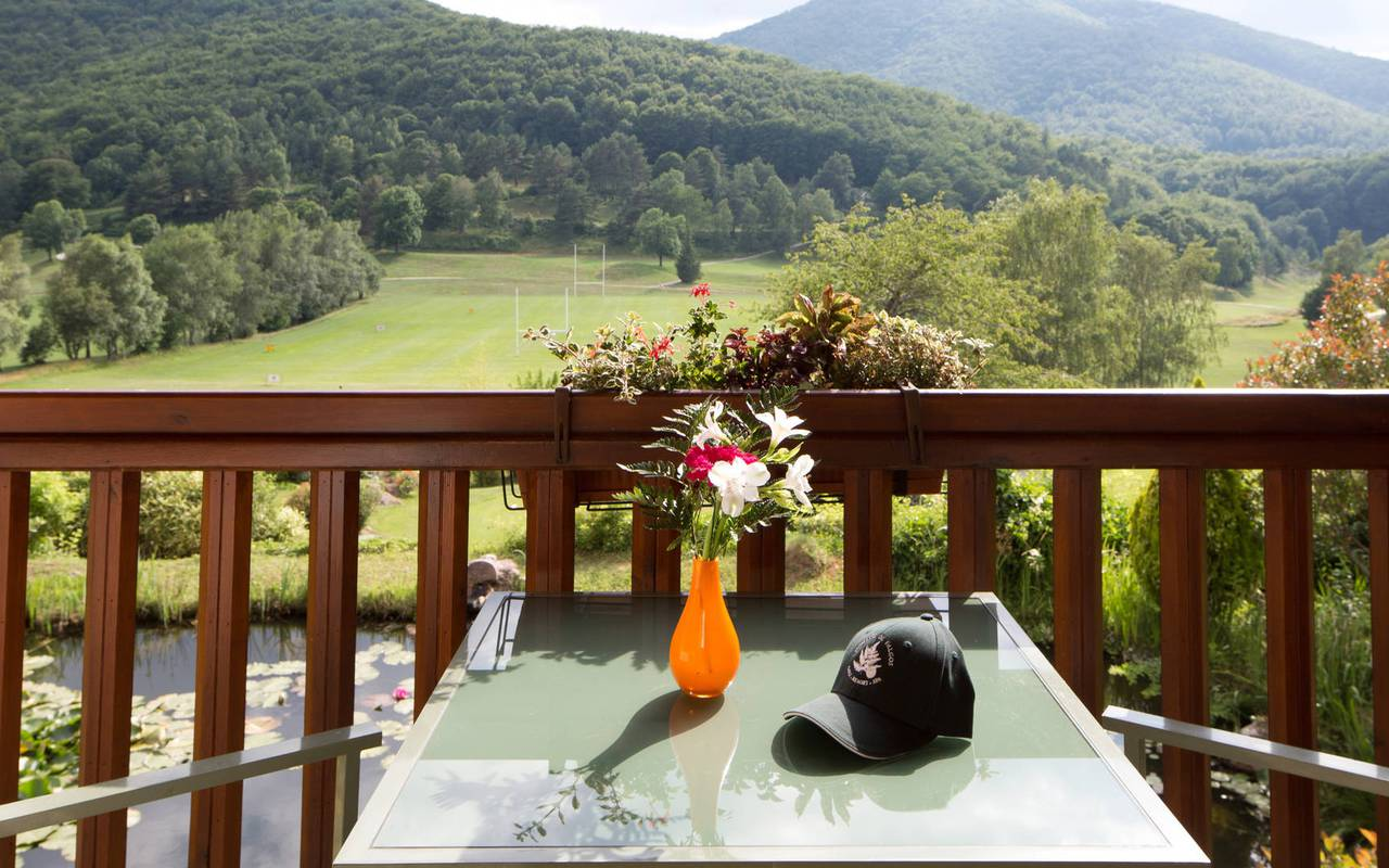 Balcony with a view of nature hotel swimming pool ceret